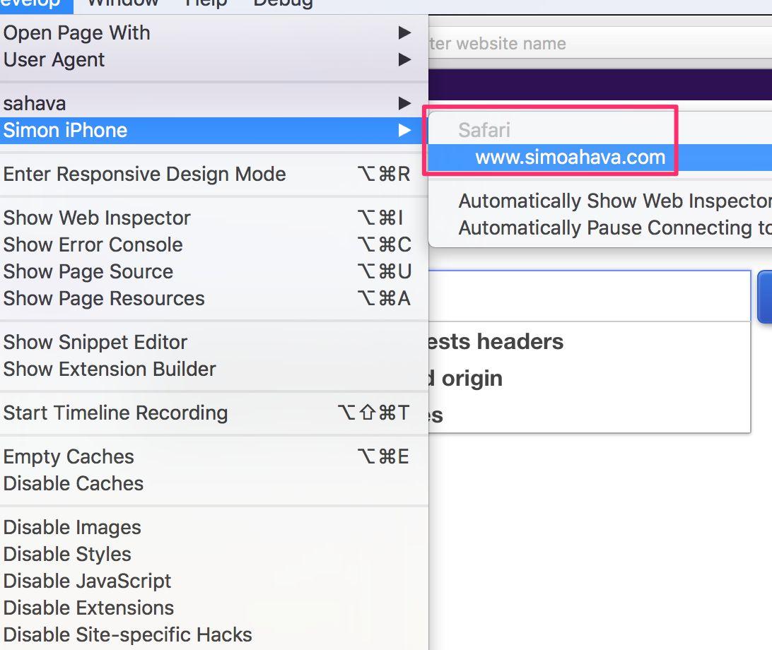 Debug Iphone Safari On Windows